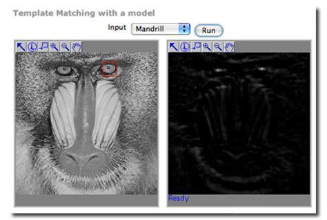 template matching big gt demos gt template matching