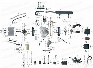 50cc Gy6 Scooter Engine Wiring Diagram