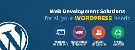wordpress expert website designing delhi swd