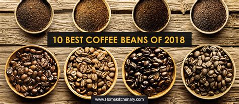 12 Best Coffee Beans For 2019 Chicory Coffee Mercola Bulletproof Without Butter On Candida Diet Crackle Mirror Table Taste Better Oversized For Keurig Kelowna