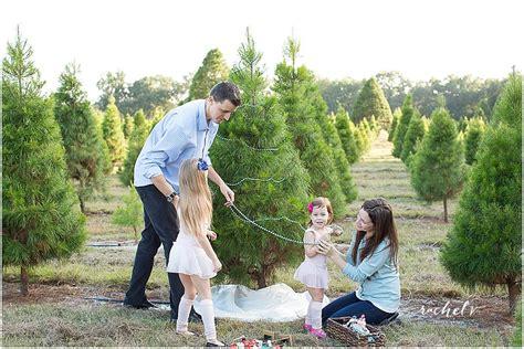 28 best christmas tree farm eustis fl brenda anderson