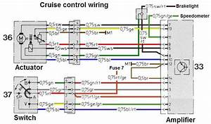 Camaro Cruise Wiring Diagram
