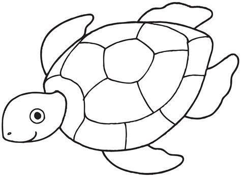 Coloring Turtle by Sea Turtle Coloring Pages For With Free Printable For