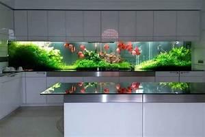 D U00e9coration D U0026 39 Aquarium Moderne Dans Un Int U00e9rieur  U00e9l U00e9gant En