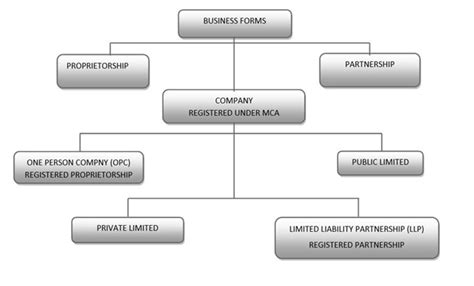 Which Type Of Business Should Startups Incorporate? Llc