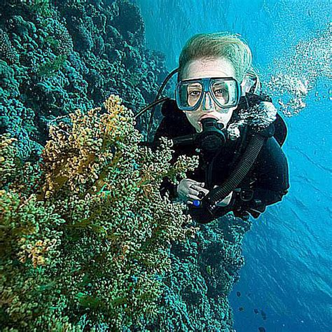 swim  scuba dive