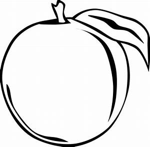 Best Apple Fruit Clipart Black And White Image