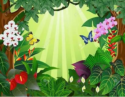 Rainforest Tropical Clipart Forest Background Rain Clip