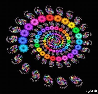Fractal Fibonacci Spirals Mandelbrot Benoit Fractals Galaxies