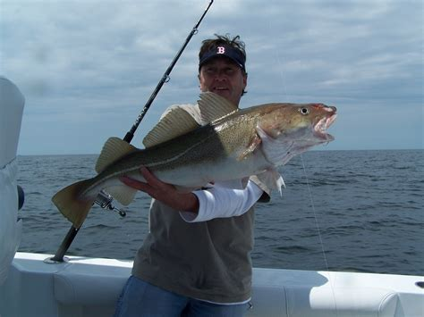 Don T Rock The Boat Fish by Just Me Some Cod Cross Post From R Gaming Because