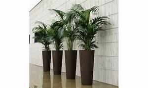 Grand Pot De Fleur Interieur : pot design ilie pour interieur ou exterieur blanc vert ~ Premium-room.com Idées de Décoration