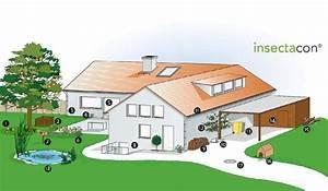 Mäuse Im Garten Vertreiben : m use vertreiben tipps vom kammerj ger ~ Whattoseeinmadrid.com Haus und Dekorationen