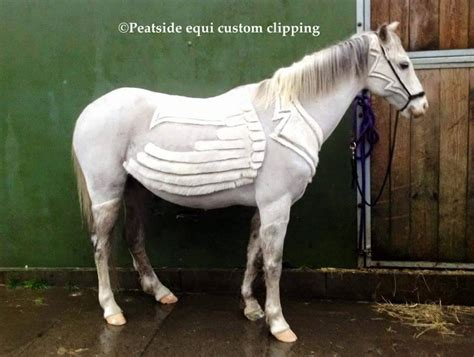 horses cut haircuts never seen before these hair awesomejelly horse1