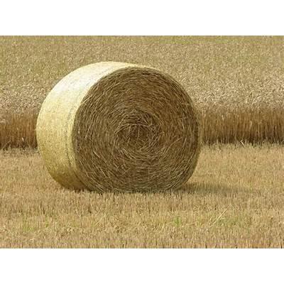 Round hay baleRound baleKajvinFlickr