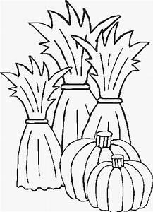 Corn Stalk Coloring Page - Cliparts.co
