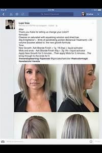 Silver Grey Aveda Formula Aveda Hair Color Aveda Hair