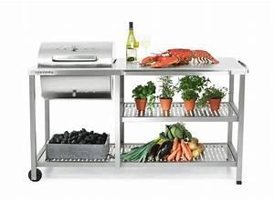 Edelstahl Outdoor Küche : outdoor k che und gartenk che varianten materialien und anbieter ~ Sanjose-hotels-ca.com Haus und Dekorationen