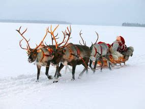 real rudolph delivers magic travel news travel
