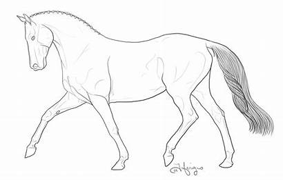 Horse Coloring Breyer Easy Jumping Horses Drawing