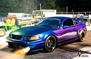 Mystichrome cobra | Ford mustang cobra, Mustang cobra, Mustang cars
