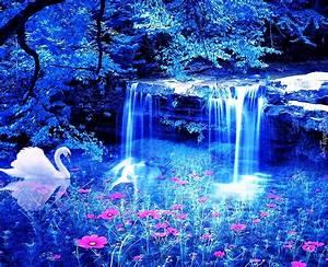 Łabędz, Wodospad, Jeziorko, Kwiatki