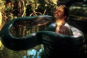 Anaconda   vinnieh