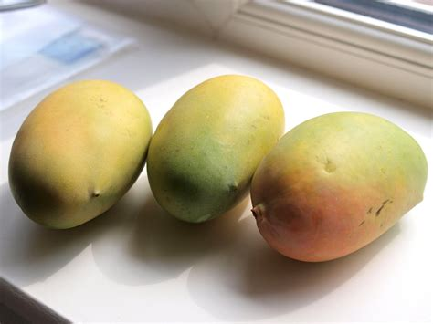 A Guide To Buying Indian Mangoes