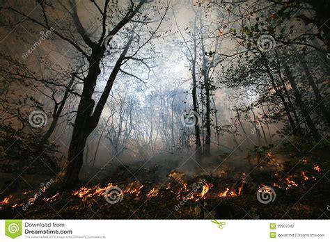 Skogsbrand arkivfoto. Bild av medf8ort - 30907042