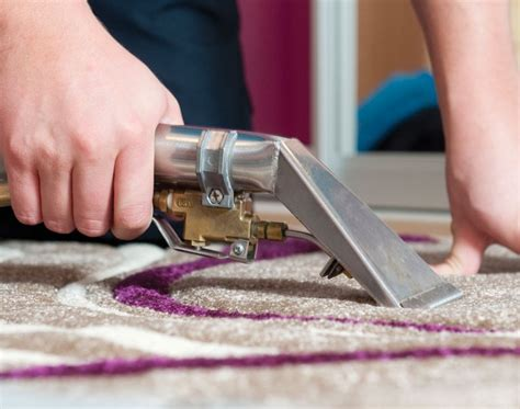 rug cleaning services carpet cleaning in lewisham by servicemaster clean