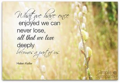 Sympathy Quotes Quote Simple Messages Sayings Message