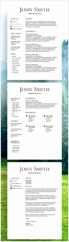 cv template monster  samples examples format