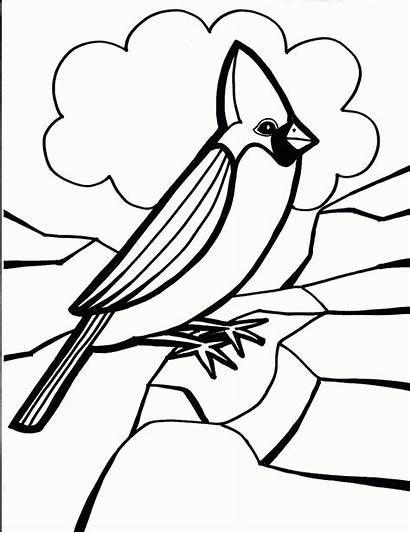Coloring Bird Cardinal Pages Birds Cardinals Printable
