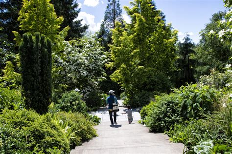 Gardens Bellevue bellevue botanical garden celebrates 25 years of amazing