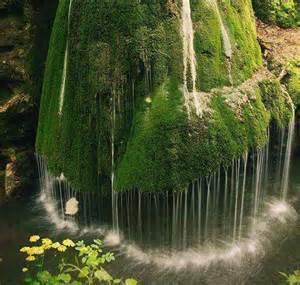 I LOVE NATURE - Nature Screenshot