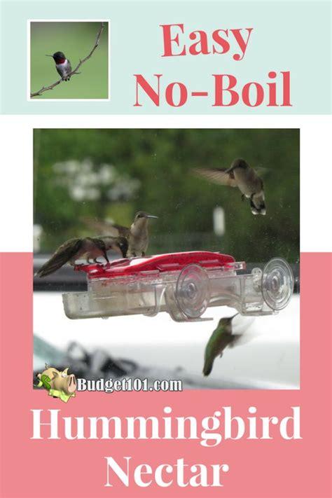 hummingbird nectar    homemade hummingbird food