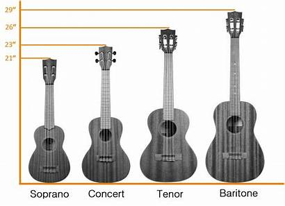 Ukulele Sizes There Guide Standard Complete Measurements