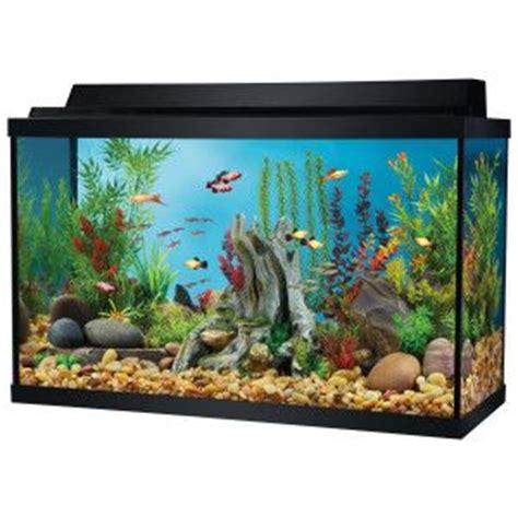29 gallon aquarium top fin 29 gallon aquarium starter kit aquariums petsmart office pets