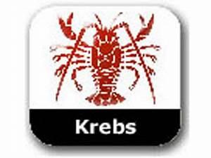 Krebs Aszendent Berechnen : horoskop krebs single frau 2014 ~ Themetempest.com Abrechnung