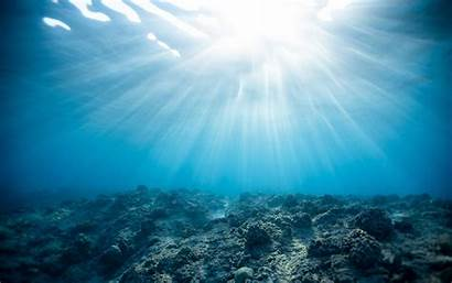 Underwater Ocean Corals Background 4k Ultra