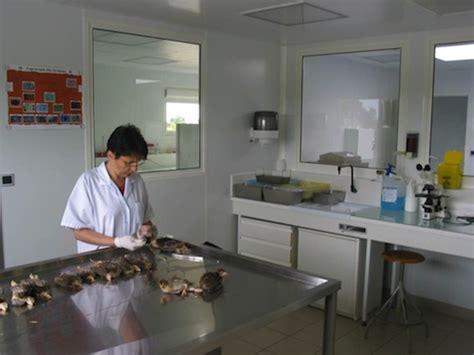cabinets v 233 t 233 rinaires vendee et deux sevres