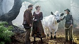 'Into the Woods' Review: Be Careful What You Wish For ...