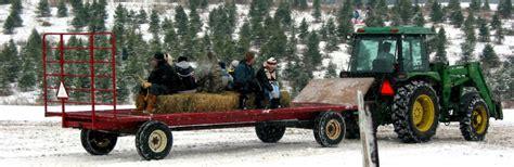 christmas tree farms near brookfield wi hall mazda in