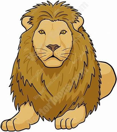 Lion Down Male Lying Clipart Female Drawing