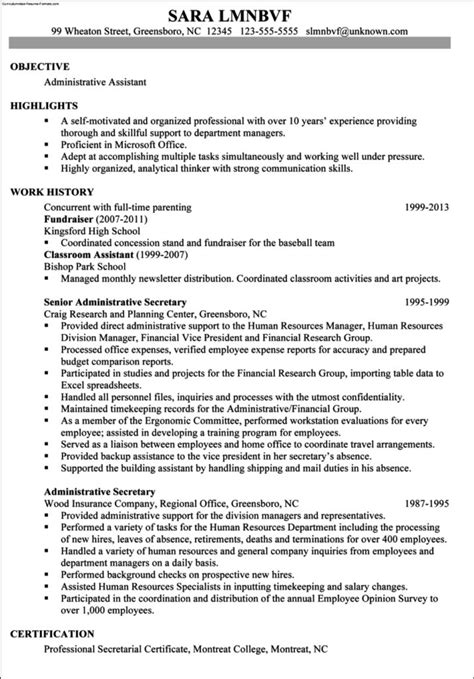 Chronological Resume Professional by Professional Chronological Resume Template Free Sles