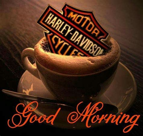 Having morning coffee, watching the sunrise in the morning brings me a lot of happiness but there is lack of a little thing; Morning Greetings (With images)   Harley davidson shop, Harley davidson, Harley