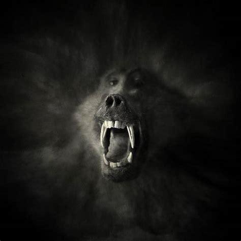 psycho photography top design magazine web design