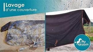 lavage d39une couverture avec my groom cdn horse youtube With nettoyage tapis avec showroomprive canapé