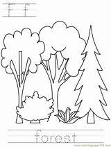Coloring Forest Malvorlagen Wald Gratis Popular sketch template