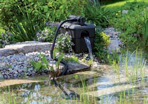 Plante Pour Bassin Extérieur : plantes filtration tout ~ Premium-room.com Idées de Décoration