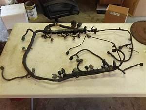 2000 F150 Engine Wire Harness : purchase ford f 150 5 4l triton v8 fuel rail wiring ~ A.2002-acura-tl-radio.info Haus und Dekorationen
